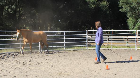 gina-horse-3